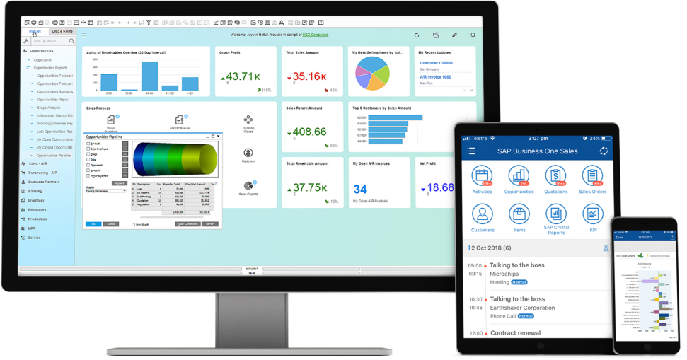 SAP Business One Screen Devices