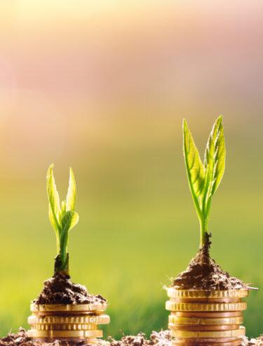 SAP Business One für Start-Ups - mit UNIORG