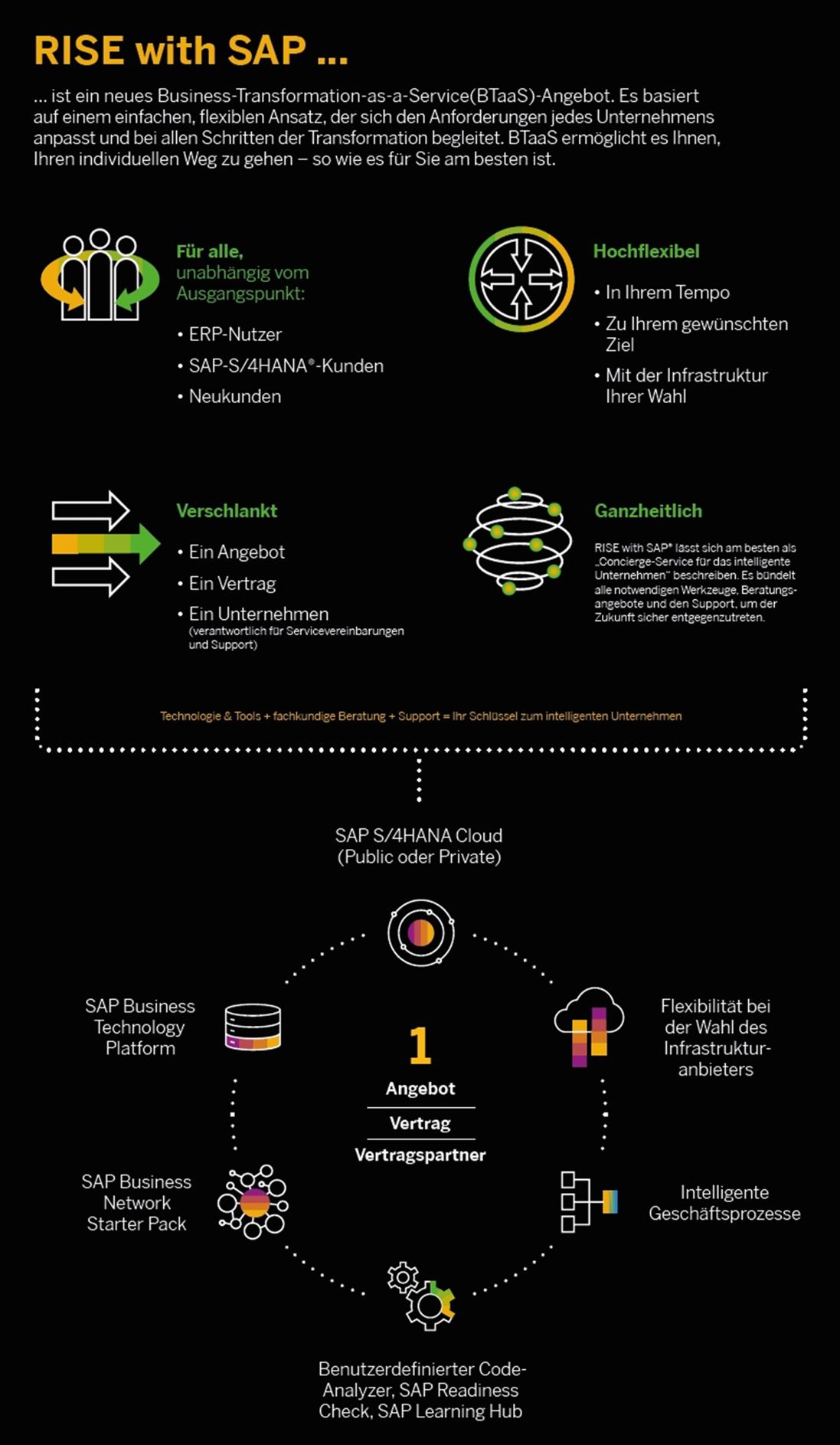 Info-Grafik: Rise with SAP